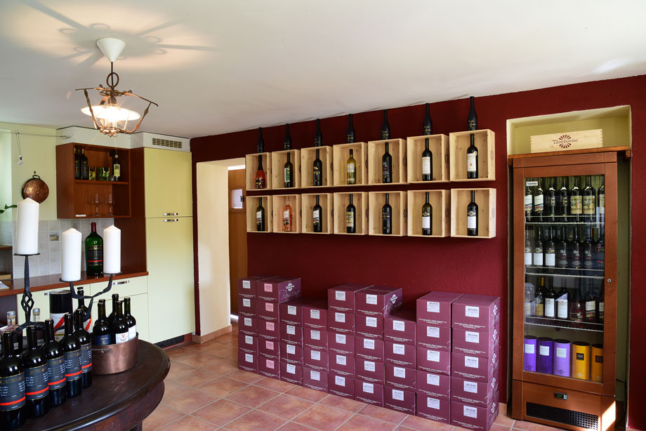 degustazione tamborini vini tenuta vallombrosa enoteca vallombrosa malcantone